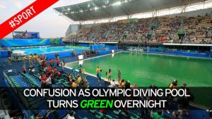 olympic pool turned green