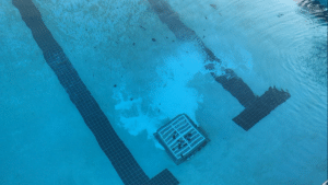 the wrong way to add calcium to a pool, add calcium, calcium prill, swimming pool calcium, undissolved calcium, calcium burns plaster, calcium damage plaster pool