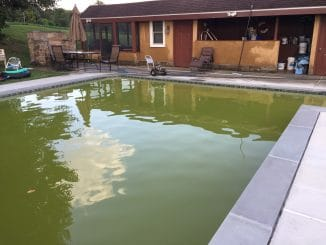 copper green pool, green from copper