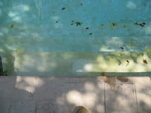 instant gratification, delayed gratification, pool turned green from copper, copper stains, pool stain remover, pool stains, pool stain treat, copper green pool, acid, jack's magic #2, calcium hydroxide