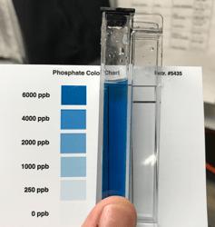 fosfatos, phosphates, phosphate test