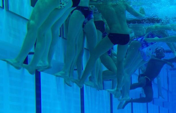 lead_large, urea, nitrates, nitrate, nitrite, pool nitrates, peeing in pool, swimmers pee, swimmer urea, urea in water, nitrogen, ammonium, ammonia