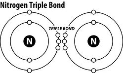 nitrogen bond, N2, nitrates, nitrites, pool chemistry