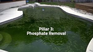 pillar 3 phosphate removal, green pool, algae pool, PR-10,000, orenda phosphate remover