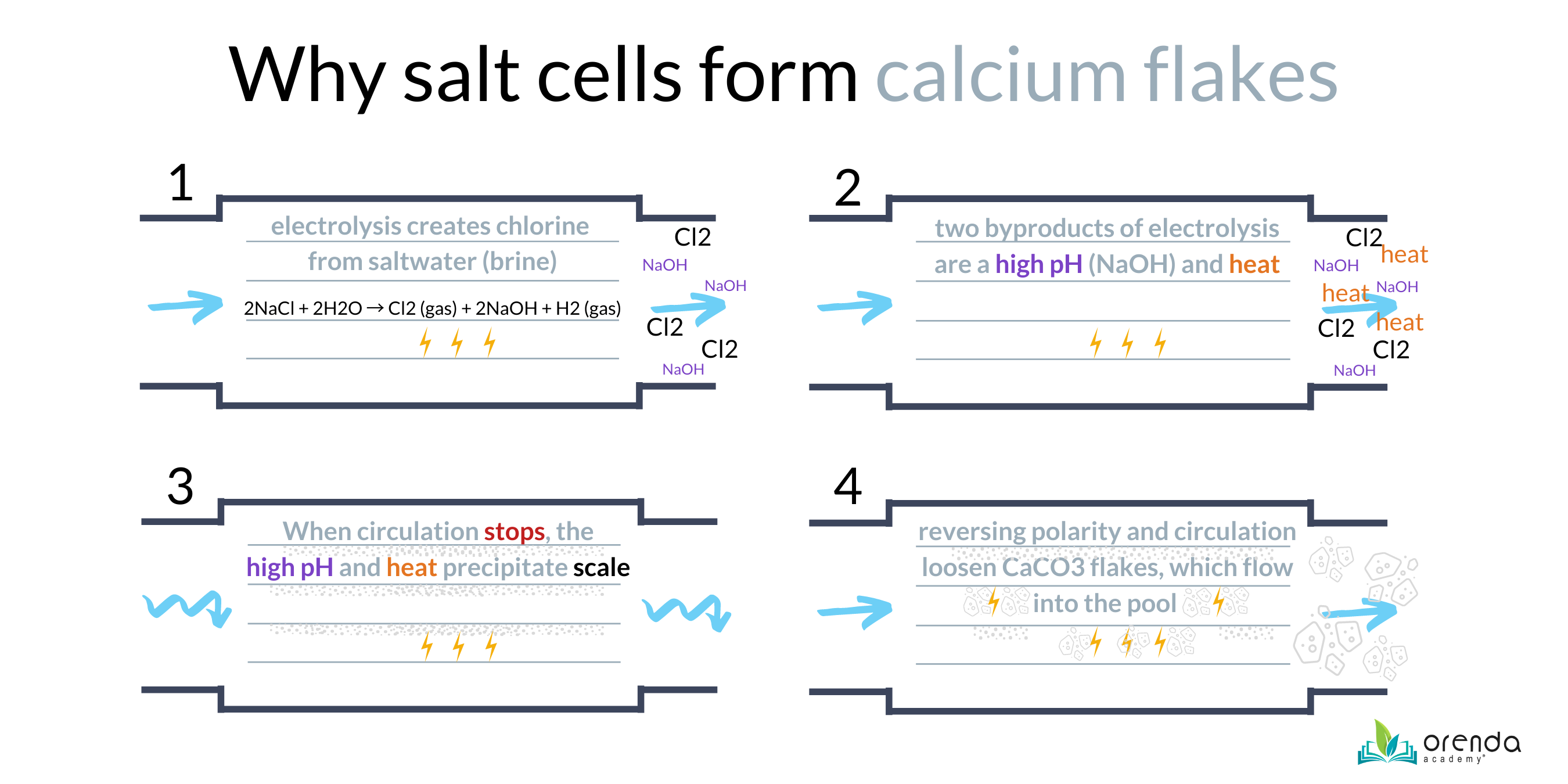 why salt cells form calcium flakes