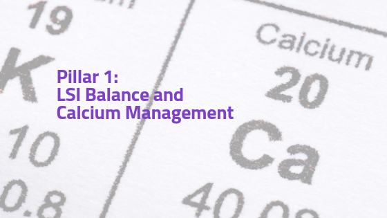 LSI Balance and Calcium Management