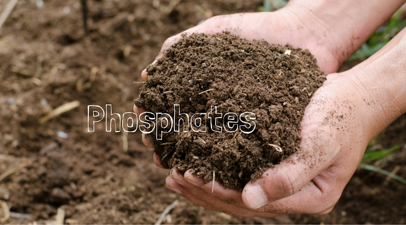 Phosphates-2.jpg