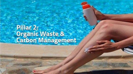 Pillar 2 - Organic waste and carbon management