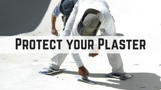 Protect-your-Plaster.png
