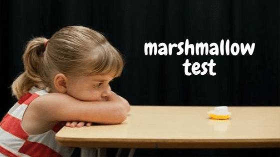 marshmallow-test.png